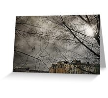 Pigeon over Pont neuf Greeting Card