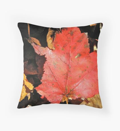 Oh! Canada Throw Pillow