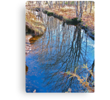 Reflections in the Stream Canvas Print