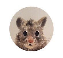 Watercolour hamster by Mason Griffiths