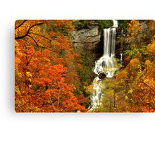 Autumn Befalling Raven Cliff Canvas Print