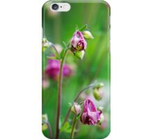 Pink Columbine Flowers iPhone Case/Skin