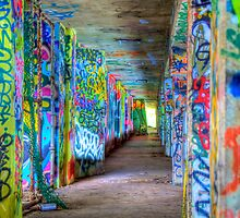 Under the Miami Marine Stadium **SPECIAL SERIES** by Bill Wetmore