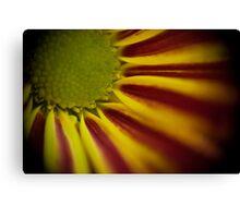 Bokeh Flower Canvas Print