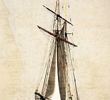 Sail Away by Timothy Gass