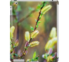 Pussy Willow Nature Abstract Art iPad Case/Skin
