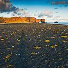 Iceland  by Patrycja Makowska