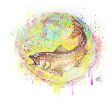 Trout by tomhanch
