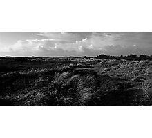 Dunes of Denmark  Photographic Print