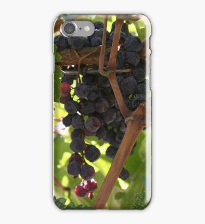 Raisins iPhone Case/Skin