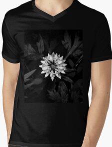 Crown Vetch: Black Sunshine V Mens V-Neck T-Shirt