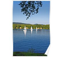 Three white sailing boat on Solina Lake Poster