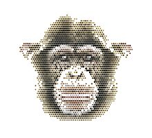 Pixel Chimp Photographic Print