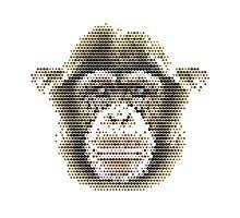 Pixel Chimp Photographic Print