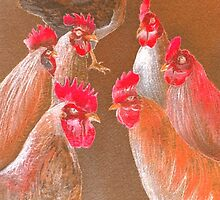New Chick On The Block In Red by bill holkham