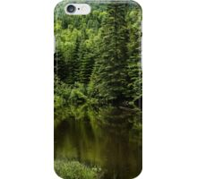 Quiet Rain and Forest Fairies  iPhone Case/Skin