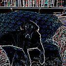 If Van Gogh had a dog by skreklow