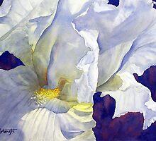 White Iris by Joe Cartwright
