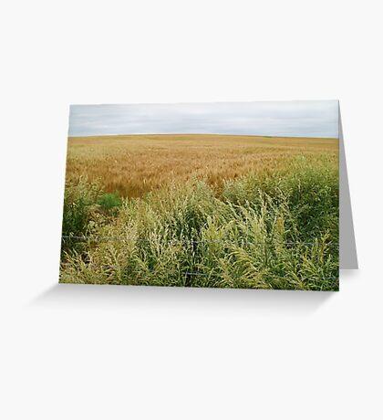 A varied field near Oz. Greeting Card
