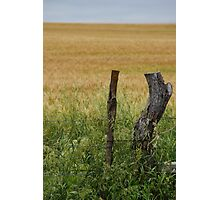 The fencepost by itself Photographic Print