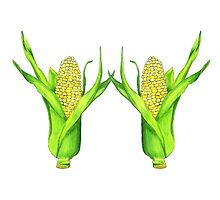 Two Ears of Corn by J Danielle Wehunt