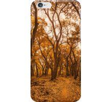 Golden Fall iPhone Case/Skin