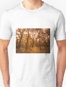 Golden Fall T-Shirt