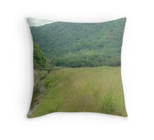 The Girl by the Stream... Throw Pillow