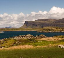 West Coast Mull by Lorraine Parramore
