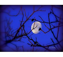 Moon in Texas Photographic Print