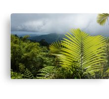 Tropical Rainforest - Jungle Green and Rain Clouds Metal Print