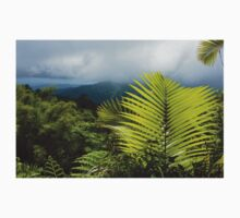Tropical Rainforest - Jungle Green and Rain Clouds One Piece - Long Sleeve