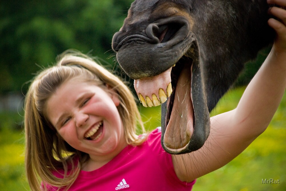 Haha Stop Horsing Around! :) by Anthony Gregory