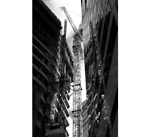 Craning My Neck. Photographic Print