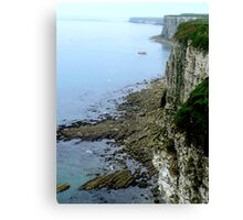 Bempton Cliffs  -  East Yorkshire Canvas Print