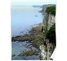 Bempton Cliffs  -  East Yorkshire Poster