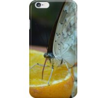 Butterfly 11  iPhone Case/Skin