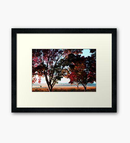 Autumn Sunrise in the Barossa Framed Print