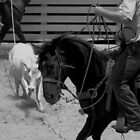 Cowboy by LynnH