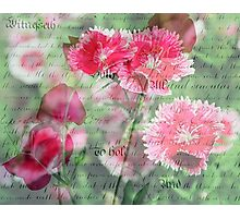 Pink Flower Antique Collage Photographic Print