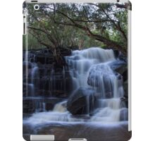 Out of the rain_Somersby Falls iPad Case/Skin