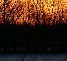 sunset fire by Dan Wagner