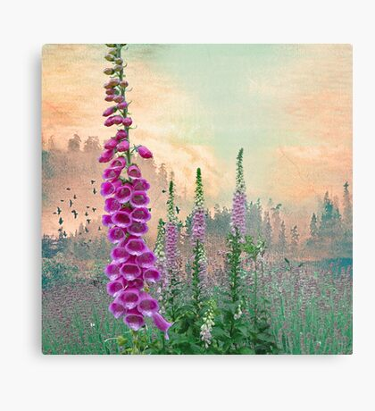 Foxglove in Washington State Metal Print