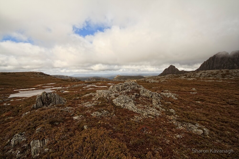 Braving the Elements_Cradle Mountain by Sharon Kavanagh
