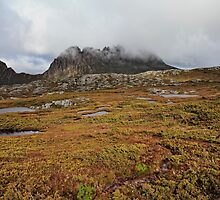 Wild and Beautiful_Cradle Mountain by Sharon Kavanagh