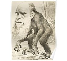 DARWIN:   The Monkey's Uncle! Poster