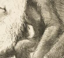 DARWIN:   The Monkey's Uncle! Sticker