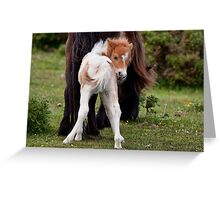 Is this my best side? Greeting Card