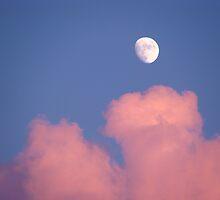 Bad Moon Rising by vigor