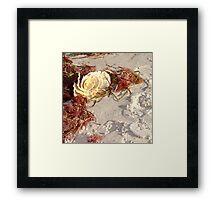 Ocean Rose  Framed Print